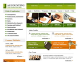 Accountants Templates Image 6